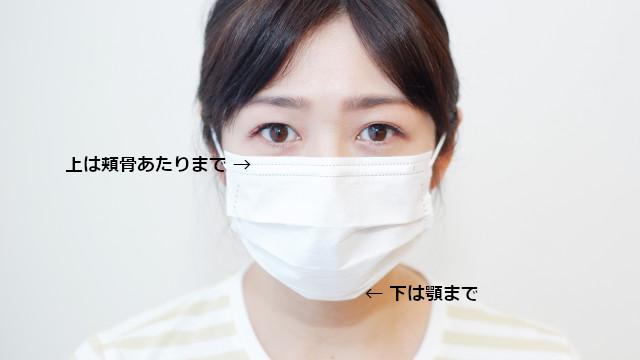 マスクの装着